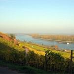 Rheinufer-150x150